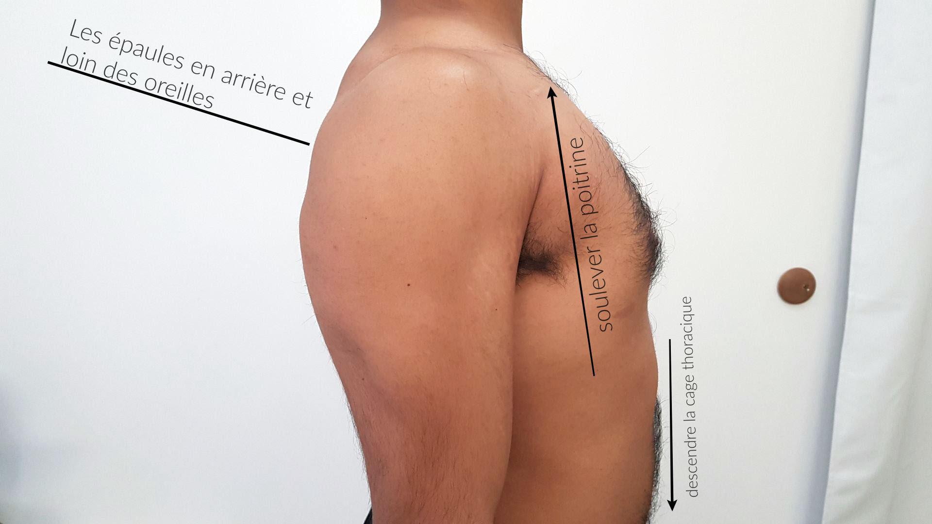 Placement des épaules et la poitrine